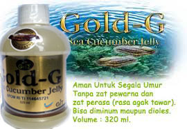 gamat-gold-g-13